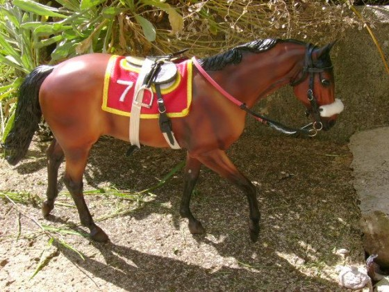 "Conquest of Paradise ask Coco (Breyer ""Seabiscuit"", John Henry Mold)"