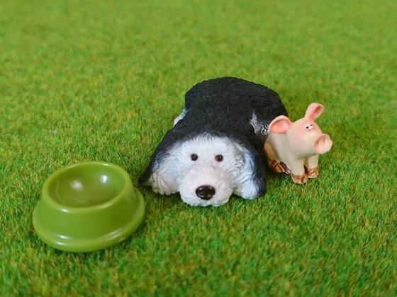 1. Ankunft und Freundschaft mit Fred dem Hofhund