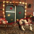 Weihnachtsponyschlitten